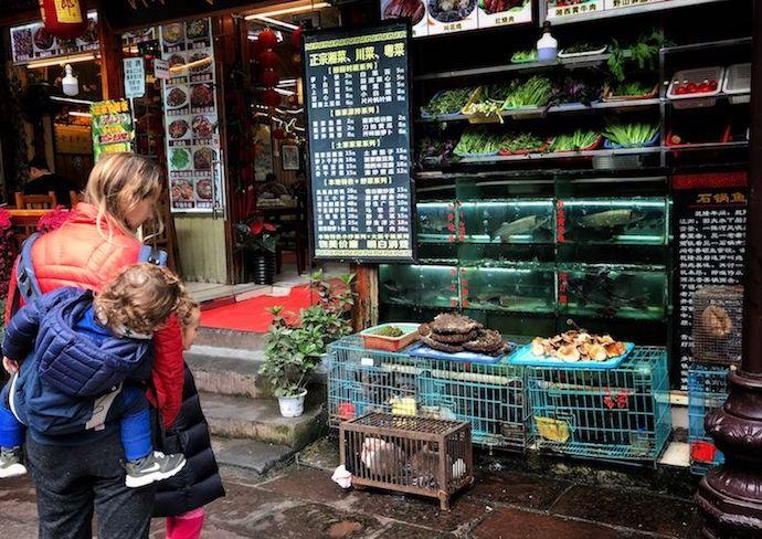 que hacer con niños en china